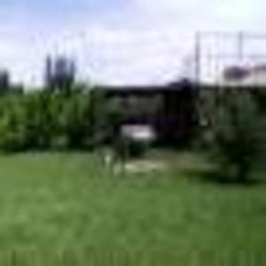Продается дача в Жилгородке
